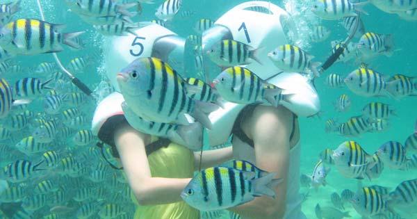 Seawalker Tour Sanur - Ten Reasons Make Sanur Bali Attractive Kids Holiday Destination
