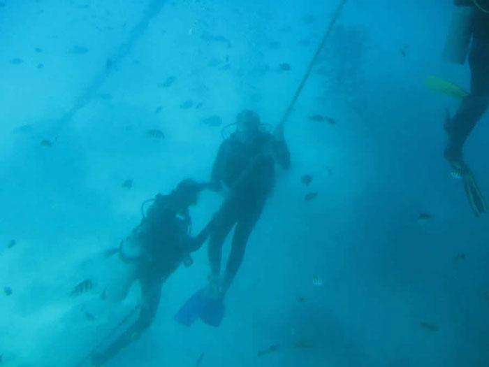 Bali Hai Reef Cruise Diving
