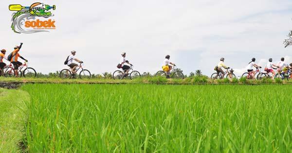 Ubud Bike Tour By Sobek