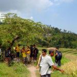 Bali Trekking 2