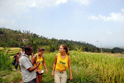 Bali Trekking 3