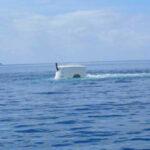 Odyssey Submarine Bali 24