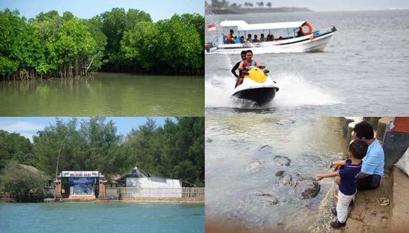 Mangrove Forest Turtle Island Tour Tanjung Benoa Bali