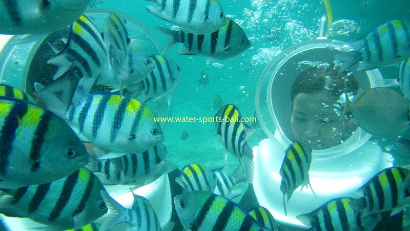 Seawalker Tour Tanjung Benoa Bali
