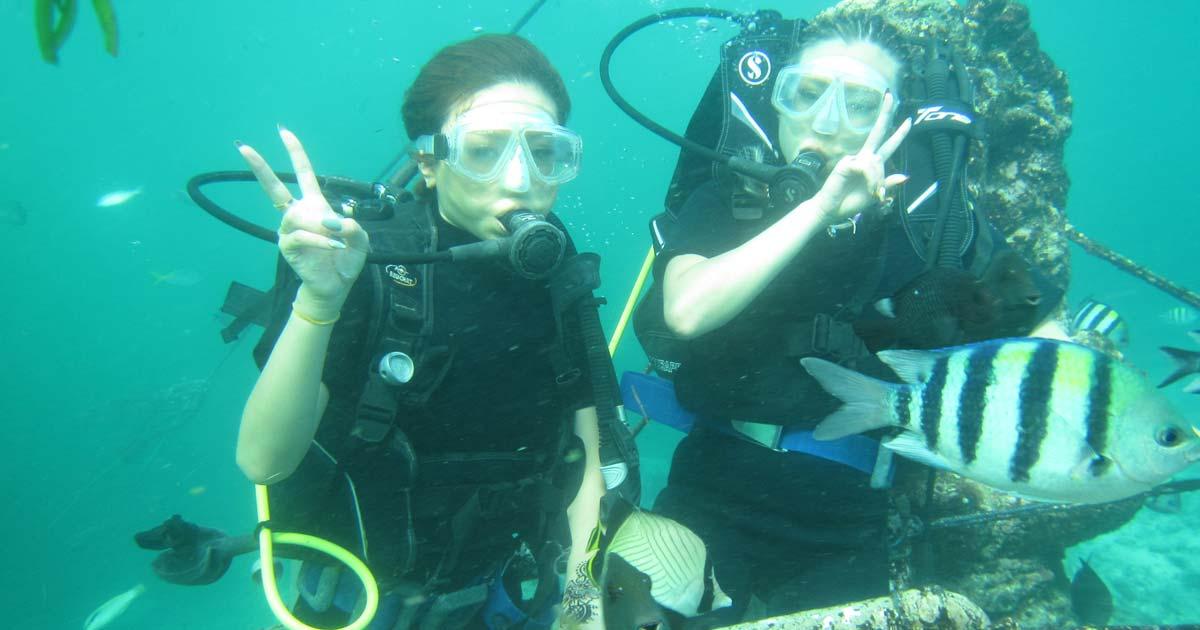 Diving Bali For Beginners