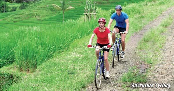 Bike Tour Through Rice Paddy