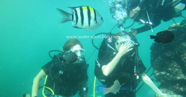 Intro Scuba Dive At Tanjung Benoa