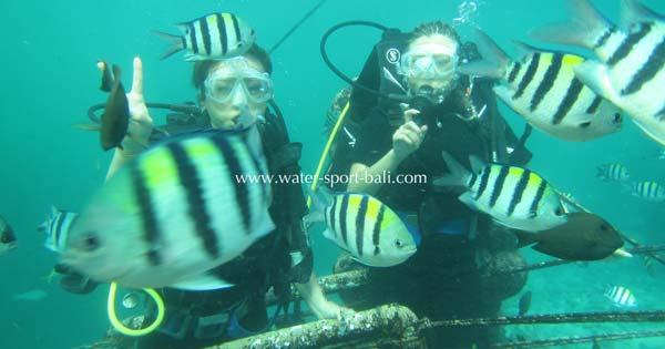 Tanjung Benoa Scuba Dive