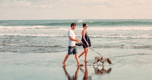 Take a walk on Batu Mejan Beach Canggu