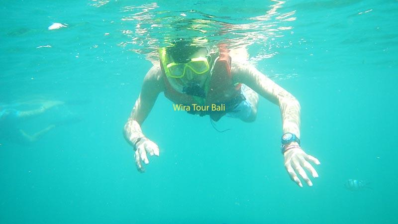 Tanjung Benoa Snorkeling Bali