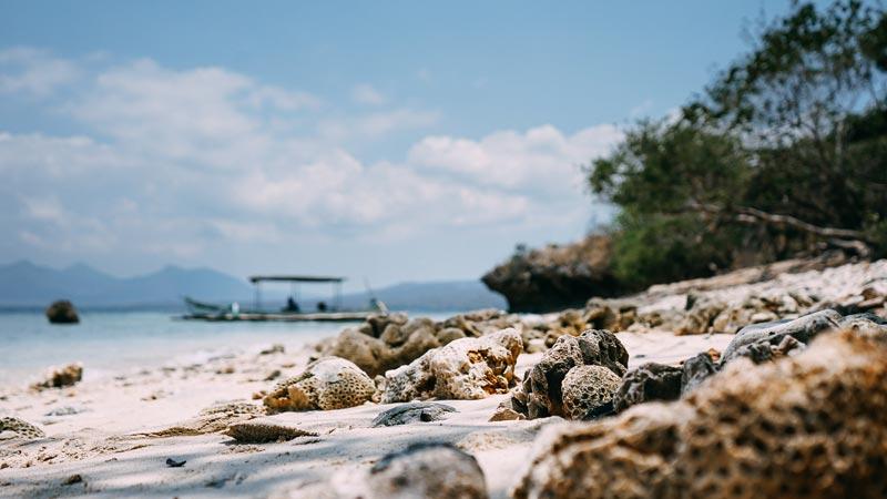 West Bali Menjangan Island
