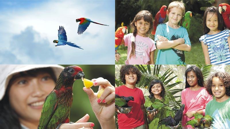 Bird Park Bali