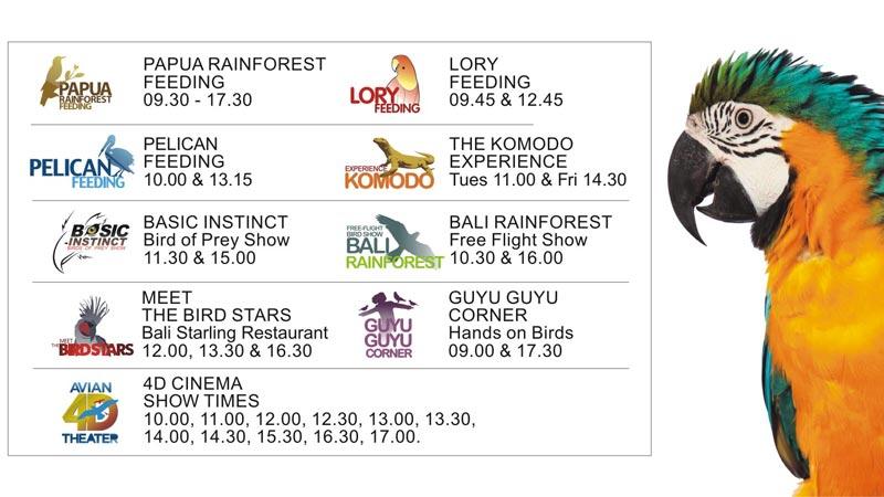 Show Schedule in Bali Bird Park