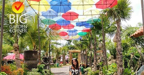 Colorful Umbrella Roof